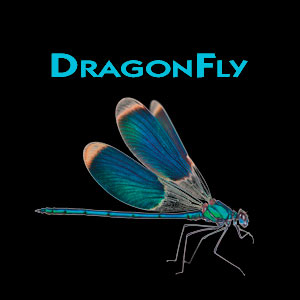 dragonfly_primary